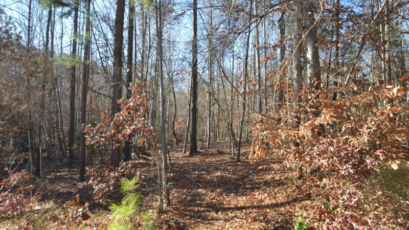Fit Realty Group Sold Beautiful Cul De Sac Lot In